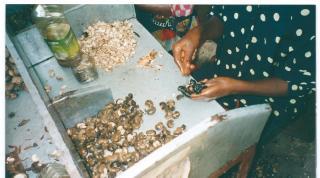 Hilfe für Guinea-Bissau e.V.
