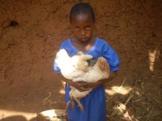 Ruanda Stiftung