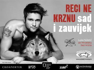 Animal Friends Croatia AFC